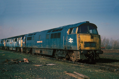 "Class 52 No D1028 ""Western Hussar"" in Swindon Works on 27 February 1977"