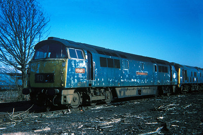 "Class 52 No D1065 ""Western Consortr"" in Swindon Works on 27 February 1977"