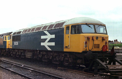 Class 56 No 56036 at Cardiff Canton on 23 July 1979