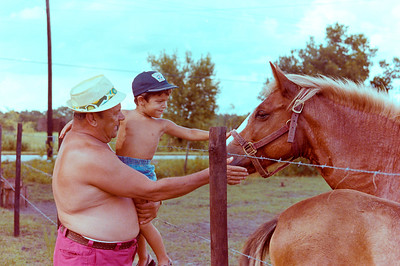 1978-8-15 #17 George In Orlando