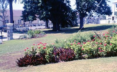 burmuda-aug  1966-014