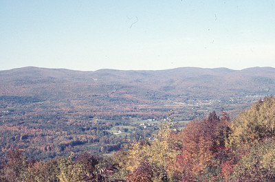 foliage_1969-010