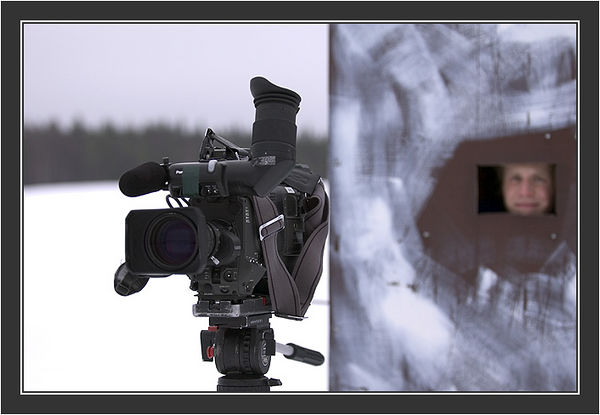 Heikki ready for action. <br /> <br /> Filming for Grouse documentary, Koskenpää, March 2004