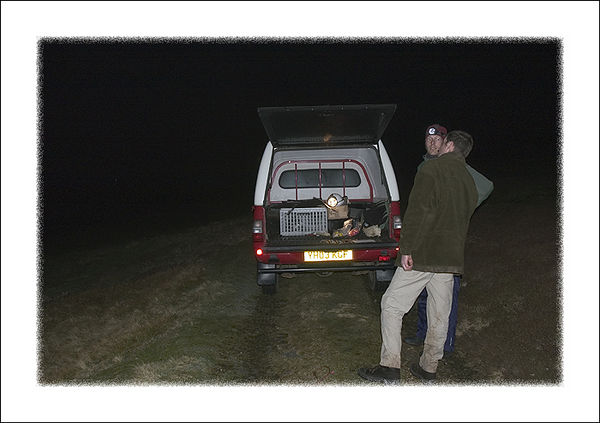 Capturing Red Grouse at night. With Nils Bommefeld and David Baines.