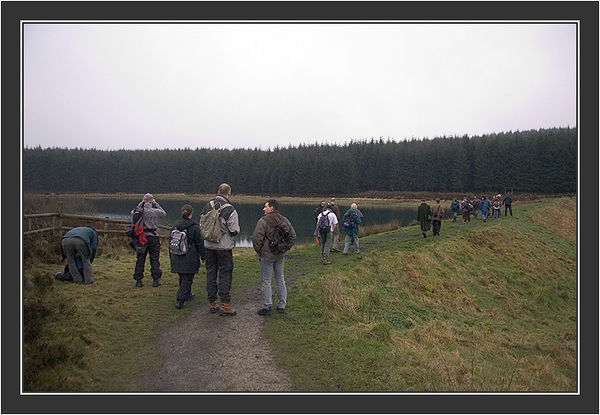 Excursion on a rainy day<br /> <br /> Black Grouse Congress, Ruthin, North Wales, March 2005.