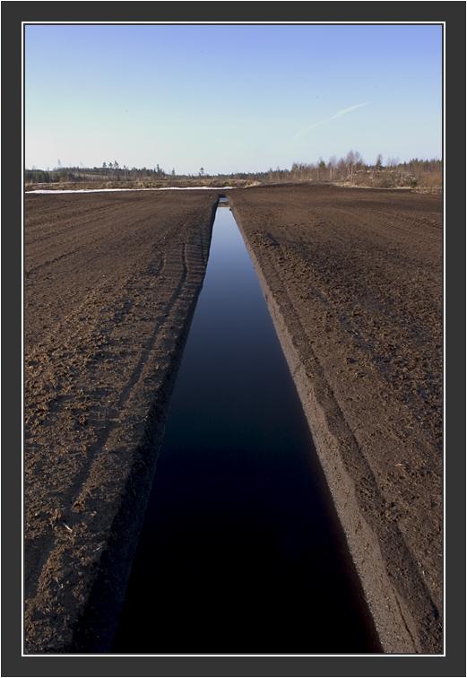 Nyrölä Peat Bog. April 2005.