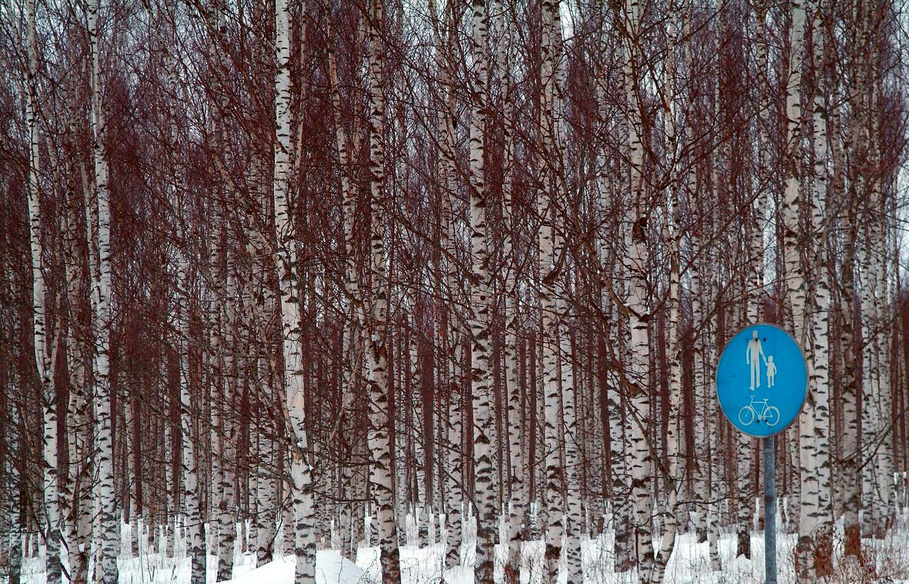 2006/13. Pedestrian & Bicycle Zone, Joroinen, Finland.