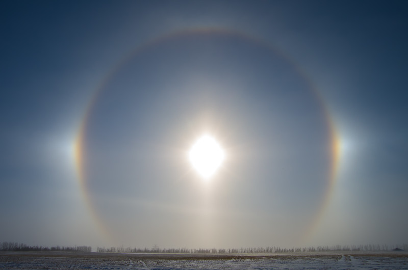 Winter's Rings