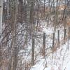 A Winter's Scene