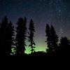 Pining Auroras