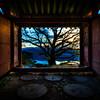 Morning of Sujongsa Temple