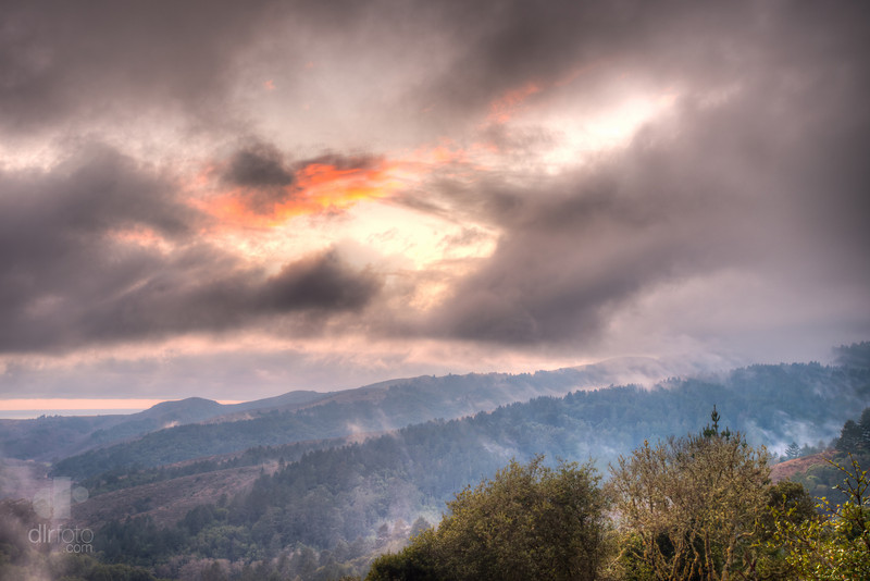 Mount Tamalpais State Park - Marin County, CA