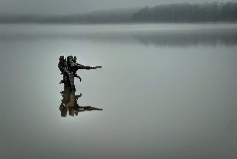Peaceful long exposure shot of a stump in the Ross Barnette Reservoir on a foggy January morning.