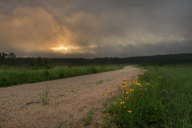 Sunrise at Harrell Priarie Botanical Area.