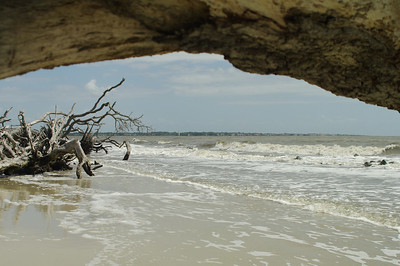 Driftwood Beach, northern end of Jekyll Island; St. Simons Island in background.
