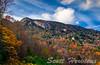 Autumn Summit