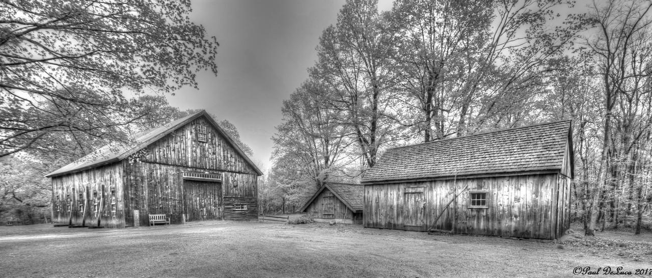 Williams Barn B&W