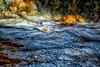 Foamy Waters
