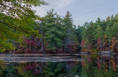 Pond, Harold Parker State Forest, dusk, HDR