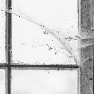 Garage window and spider web (mono) II