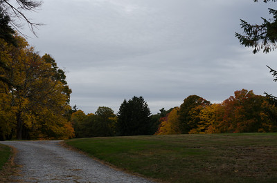 Field in West Parish Cemetery, Autumn (HDR)