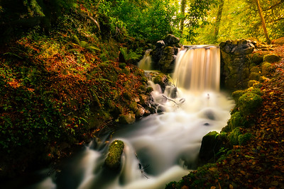 BIRR CASTLE WATERFALL