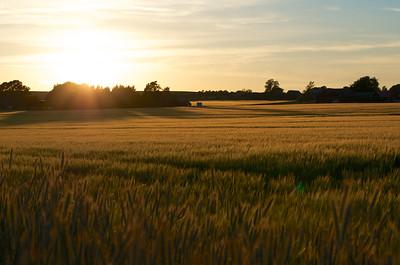 Sunset Over Östra Vemmenhög