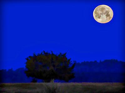_NW00376 Moonset over Plum Island