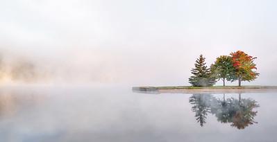_NW40330 Three Tress in Fall ~ Eastman Lake Grafton and Enfield NH