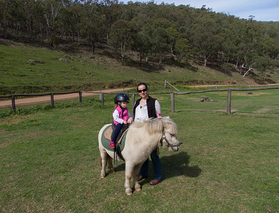Scarlett Pony Riding at Turon Gates Cabins