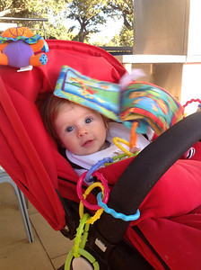 Scarlett Playing at the Watson Bay Hotel - 6 Months Old