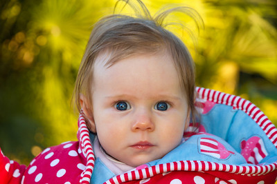 Scarlett in the Royal Botanical Gardens (4.5 Months Old)