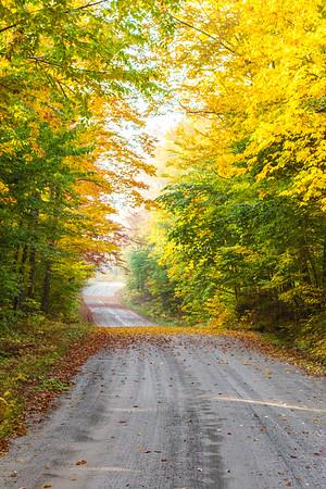 Cedar River Road