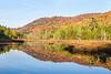 Moose River Wilderness Plains