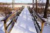 Conesus Inlet Observation Deck