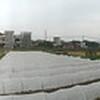 PANO_20120129_125544