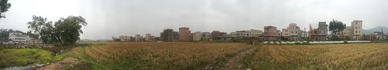 PANO_20120129_124714
