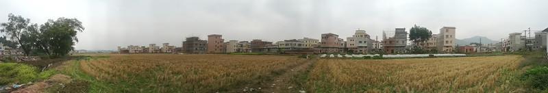 PANO_20120129_124808