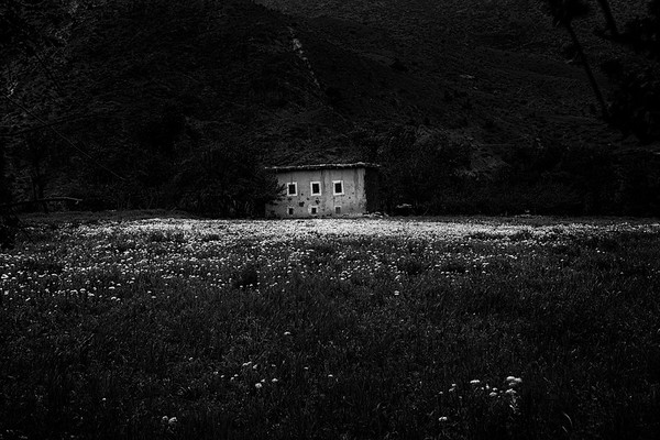 The Lonely Cottage