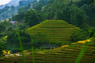 Vietnamease Pyramid
