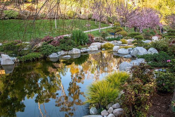 Freindship Garden, Balboa Park, San Diego, California. March 23, 2019