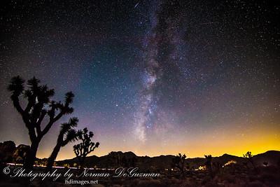 Joshua Tree National Park, CA. 10/21/2016
