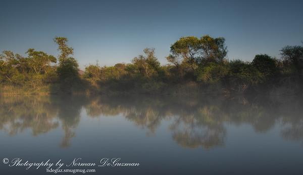 Morrison Pond, Bonita.  3/21/2015