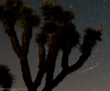 Perseid Meteor Shower. 12:43am