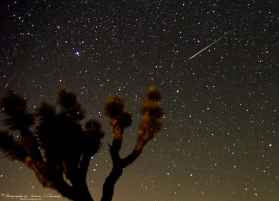 Perseid Meteor Shower. 3:00am