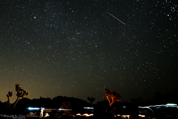 Perseid Meteor Shower. 2:51am