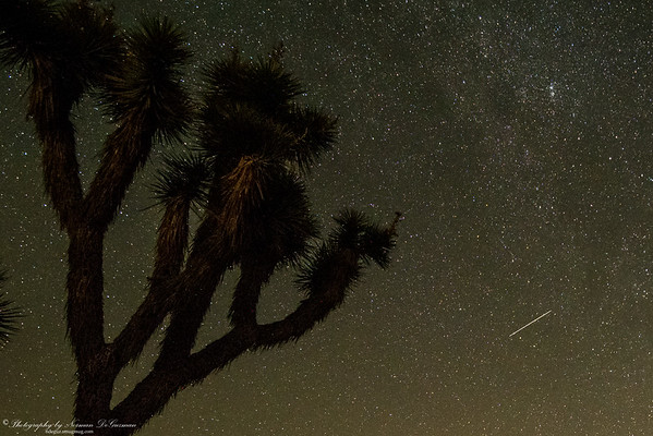 Perseid Meteor Shower. 2:45am