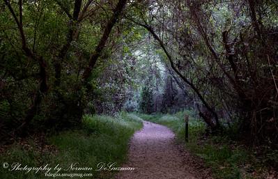 Santa Margarita Trail