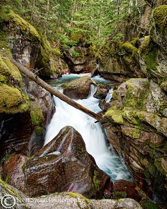 Avalanche Creek #2, Glacier National Park