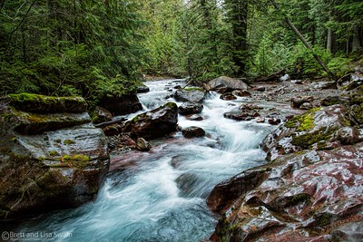 Avalanche Creek #3